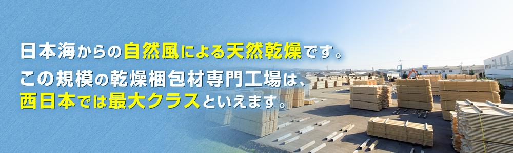日本海からの自然風による天然乾燥です。この規模の乾燥梱包材専門工場は、西日本では最大クラスといえます。